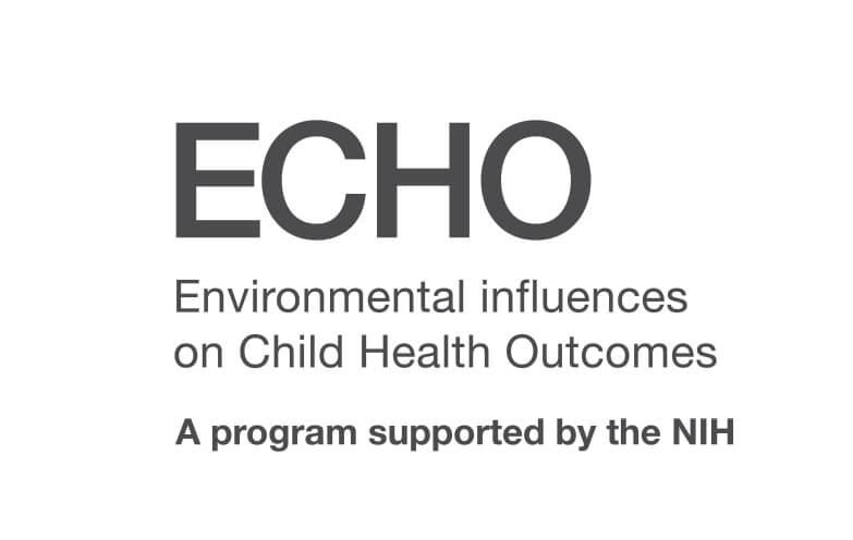 ECHO Greyscale Wordmark